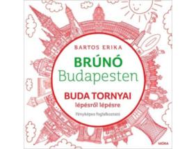 Brúnó Budapesten - Buda tornyai lépésről lépésre