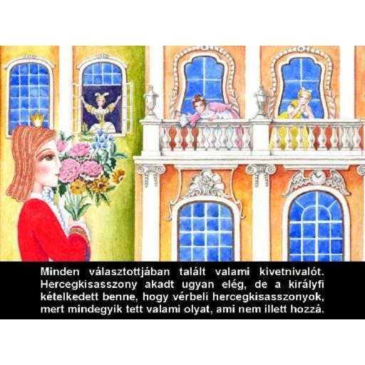 Diafilm - Borsószem hercegkisasszony