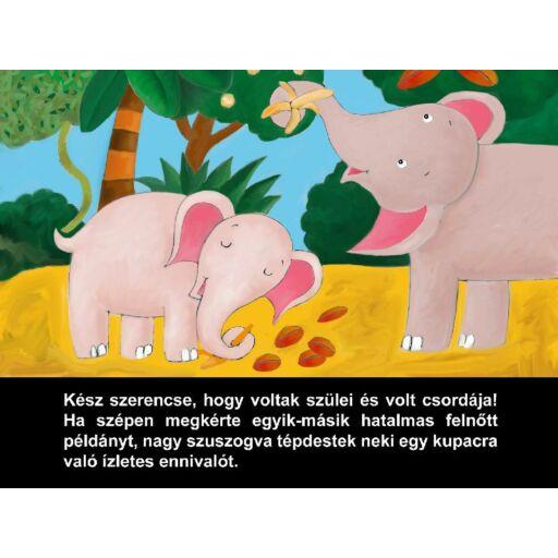 Diafilm - Az elefánt reggelije