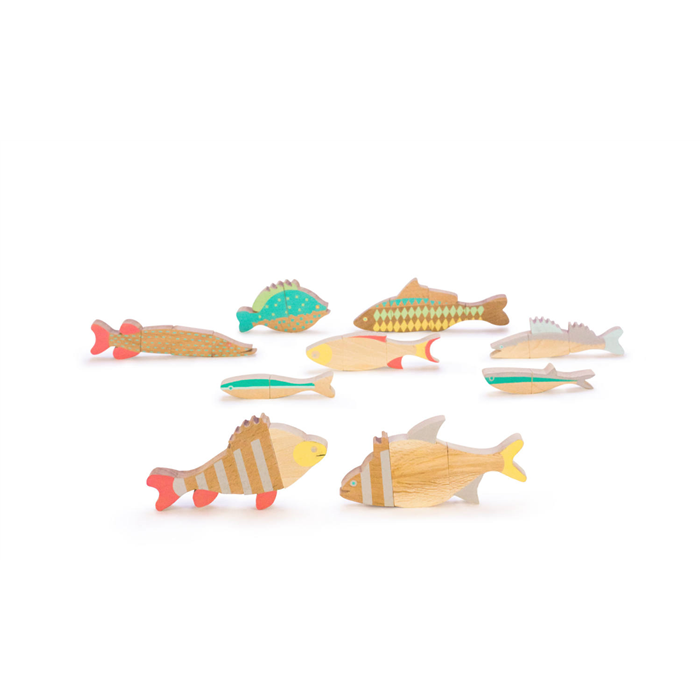 Eperfa - Balatoni halak - Mágneses, szétszedhető halpuzzle